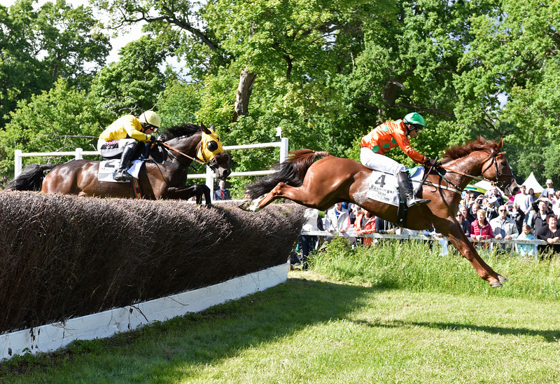 Grand National Strömsholm