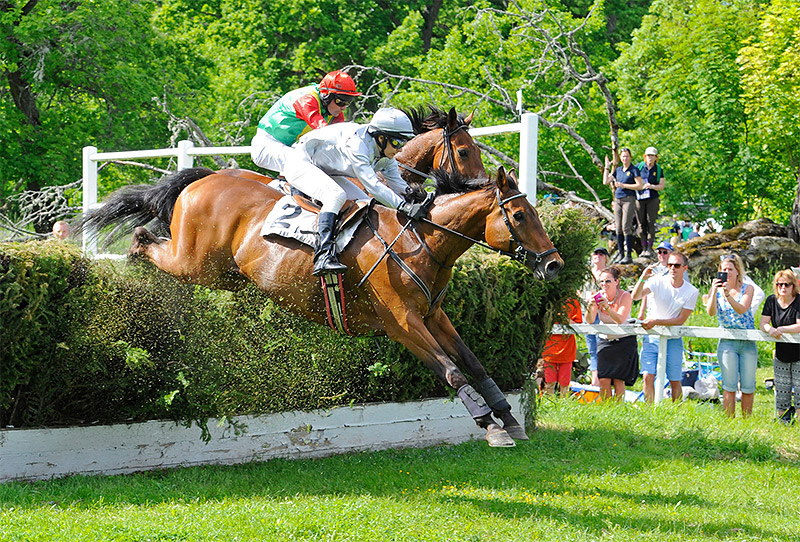 Grand National på Strömsholm